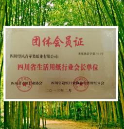 四川省生活用纸行业会长单位