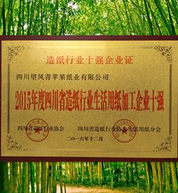 四川省生活用纸十强企业